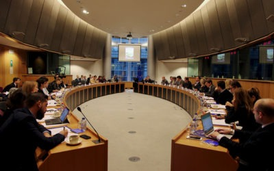 EU Athletes at the EP Sport Report hearing